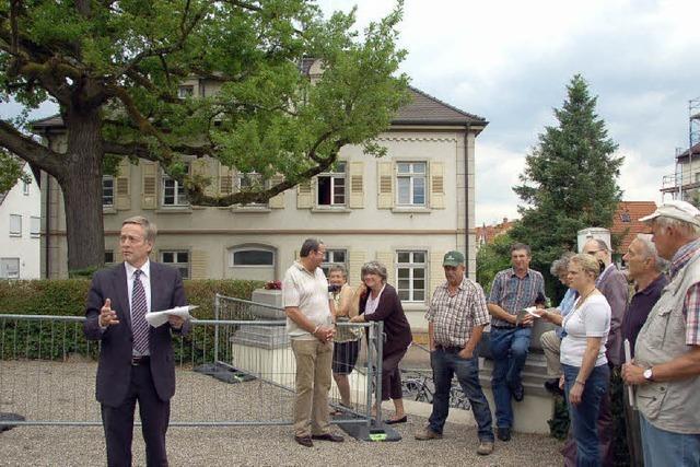 Ist die Luther-Eiche nicht mehr zu retten?