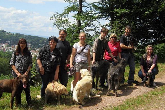Mit Hunden unterwegs