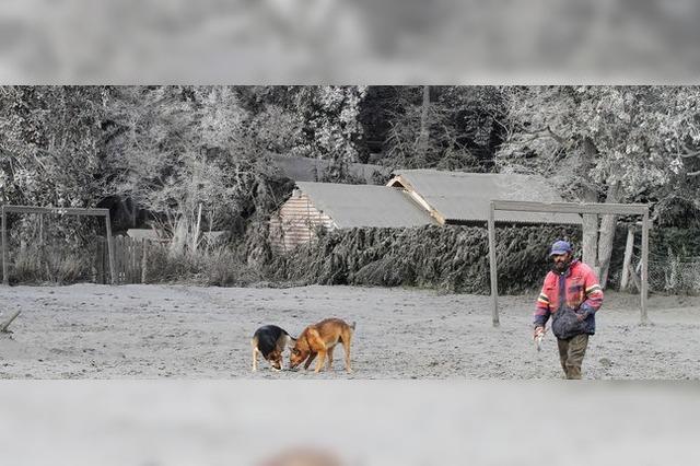 Mit dem Besen gegen die Asche des Puyehue