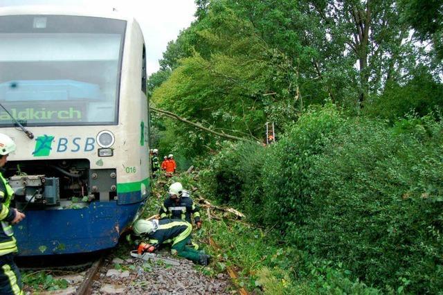 Baum stürzt auf Breisgau-S-Bahn