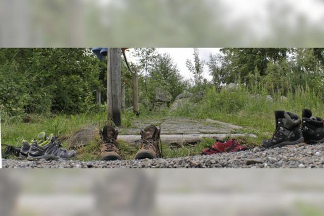 Neue Skulpturen für den Naturpfad