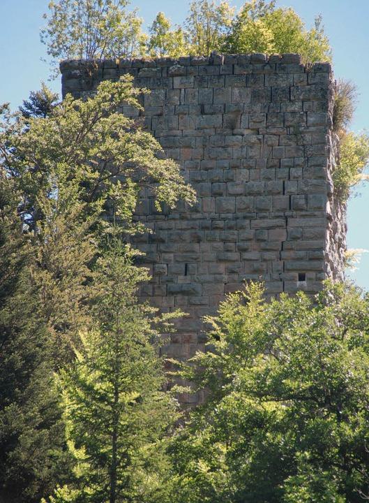 Mit seinen exakt behauenen Steinen ste... Burg Steinegg eine Besonderheit dar.   | Foto: Juliane Kühnemund
