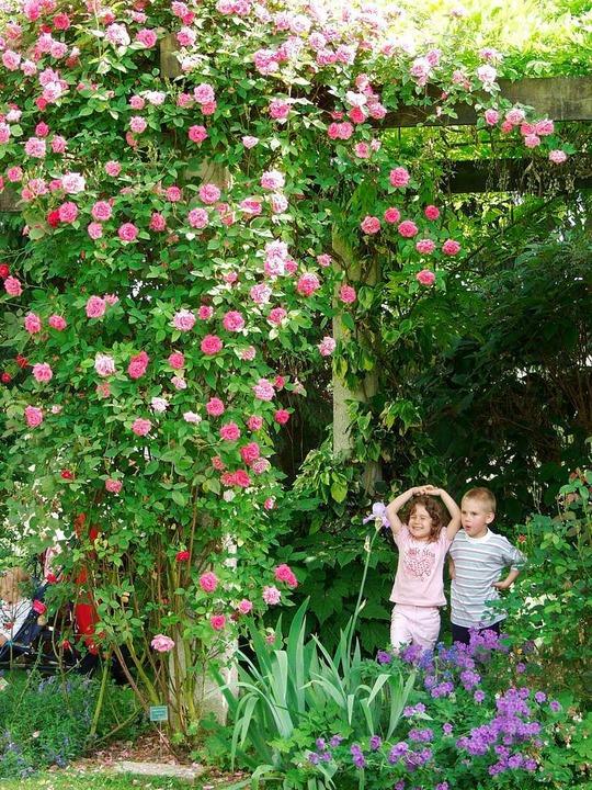 Bekannt für seinen englischen Garten: ... Ettenbühl bei Bad Bellingen-Hertingen  | Foto: ZVG