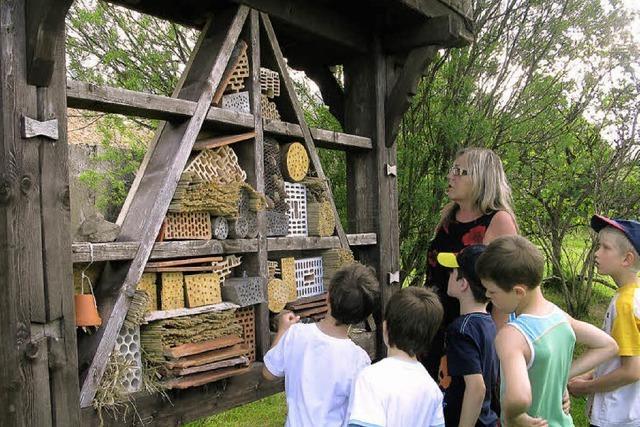 Wildbienenhotel ist eröffnet