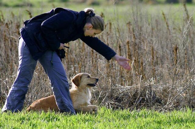 Wie Mensch und Hund miteinander sprechen lernen