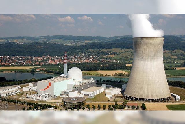 Vereint gegen die Atomkraft