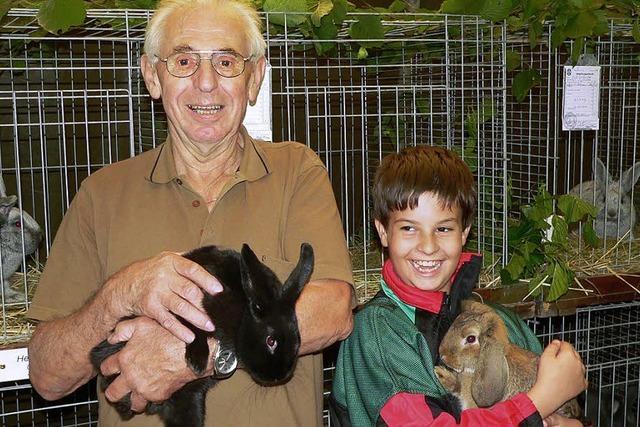 Ein Näschen für Kaninchen