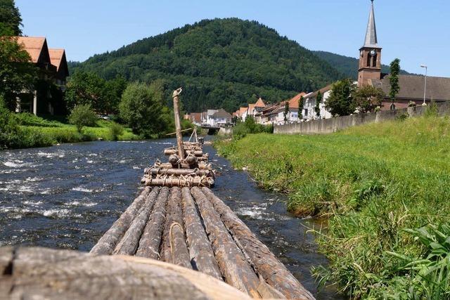 Schwarzwaldtannen in gurgelnden Fluten