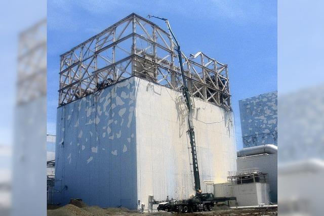 Japan will aus der Atomkraft aussteigen