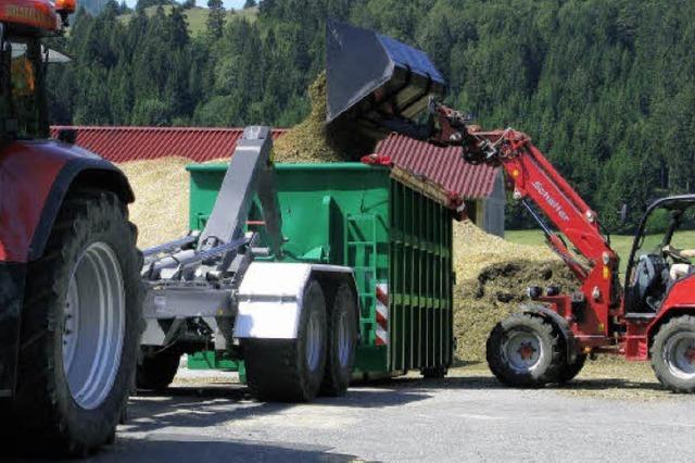 Biogasabwärme trocknet Hackschnitzel