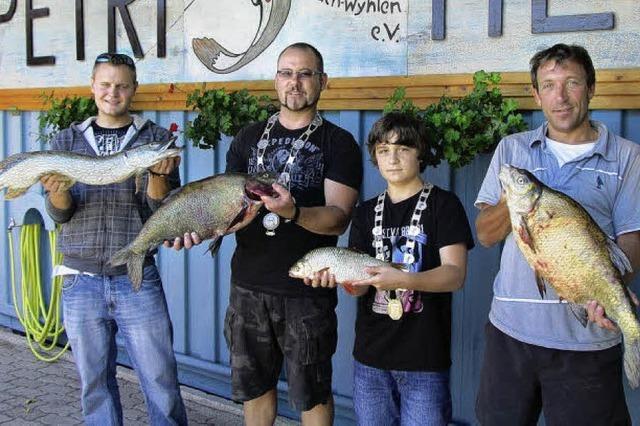 Beachtliche Ausbeute bei Königsfischen