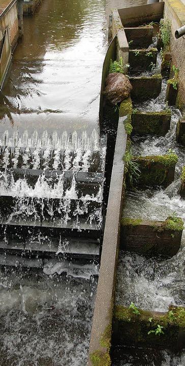 <ppp></ppp>und die Wasserkraft    Foto: Frank Kiefer
