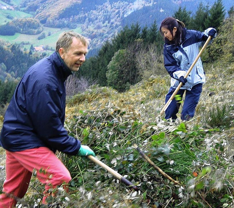 Freiwillige Helfer beim Lichten der Hänge  | Foto: Gerda Oswald