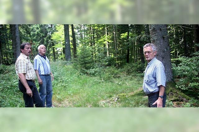 CDU: Abwesenheit der Ortsvertreter