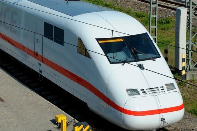 Greifvogel bringt Bahn-Verkehr durcheinander
