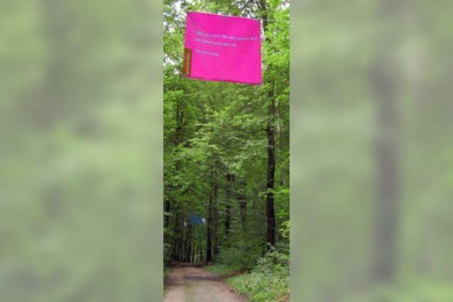 Flaggen und Stelen im Wald weisen auf das Klima hin
