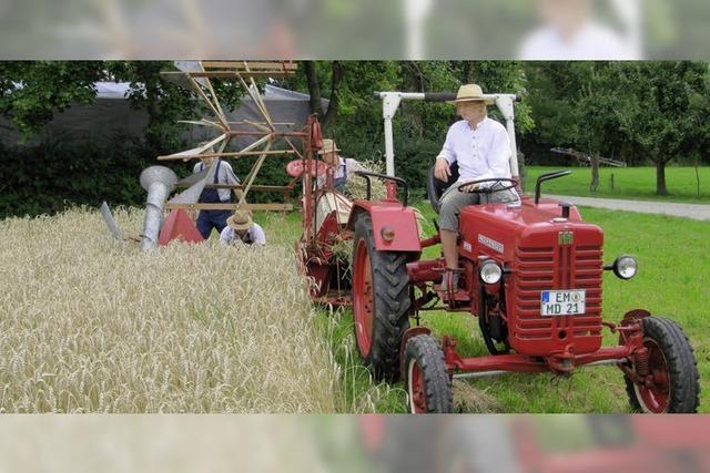 Das harte Brot der Landwirtschaft