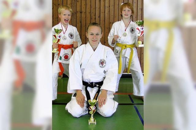 Karate Dojo erfolgreich
