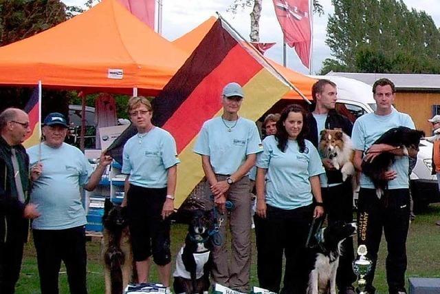 Deutsches Team beim Master-Agility-Cup Vize