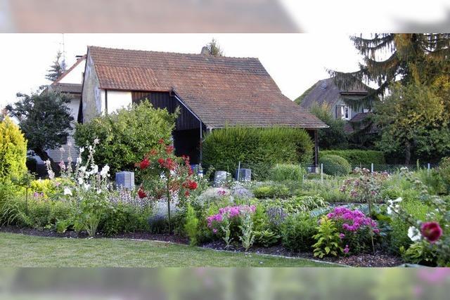 Gartenpracht in Eimeldingen