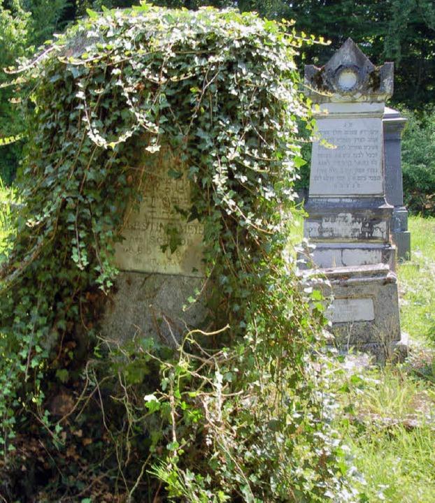 Viele Gräber auf dem jüdischen Friedhof in Durmenach sind vom Verfall bedroht.  | Foto: Annette Mahro