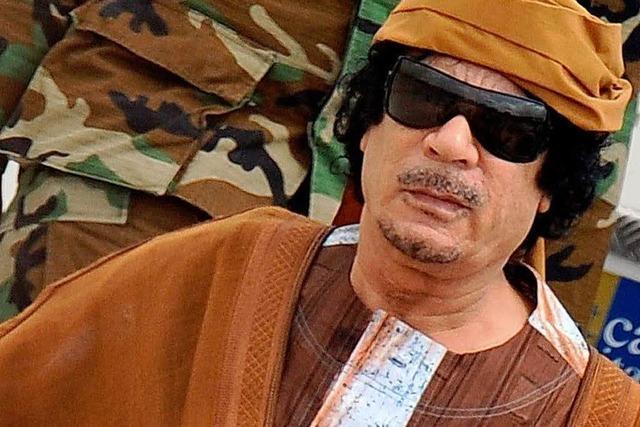 Suche nach Gaddafi – Sohn Saif al-Islam auf freiem Fuß