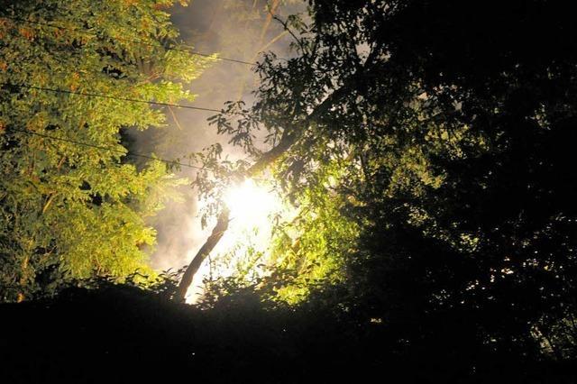 Brennender Baum legt Bahnverkehr lahm