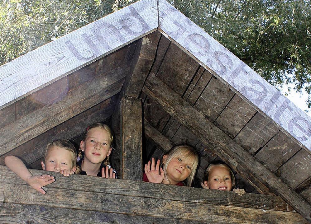 Kleine Kletterkünstler unter dem Dach des Schuppens  | Foto: Julian Kutzim
