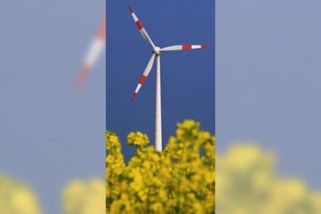 Eine Agendagruppe setzt sich für erneuerbare Energien ein