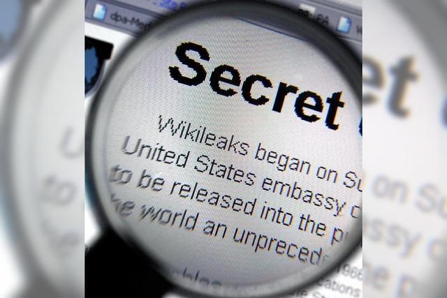 Wikileaks: Datenpanne gefährdet Informanten