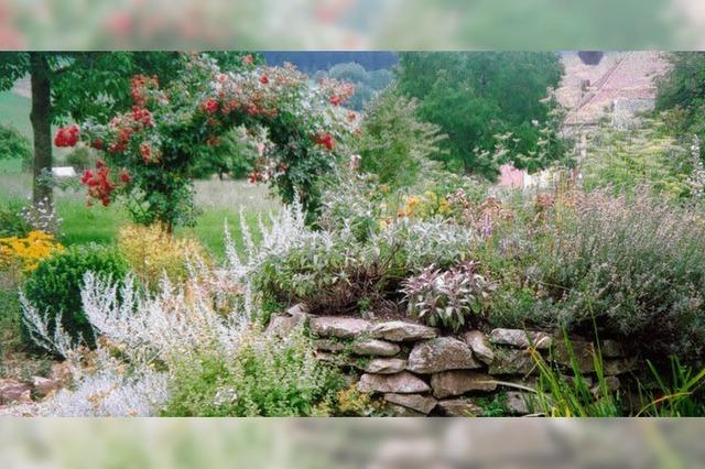 Gärtnerisches Kleinod im Oberrieder Kurgarten