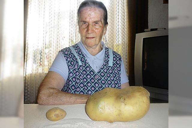 Glück mit Riesenkartoffel