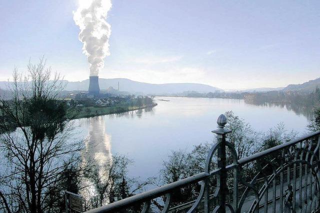 Gutachter: Schweizer AKW können Überflutung trotzen