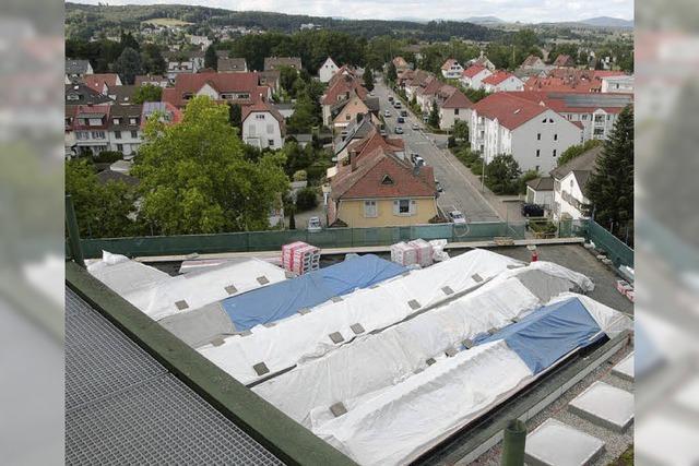 Die Grünen wollen Rheinfelden zur Solarenergiestadt machen
