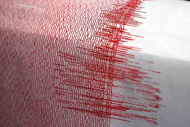 Stärke 4,4: Erdbeben im Rheinland – keine Schäden