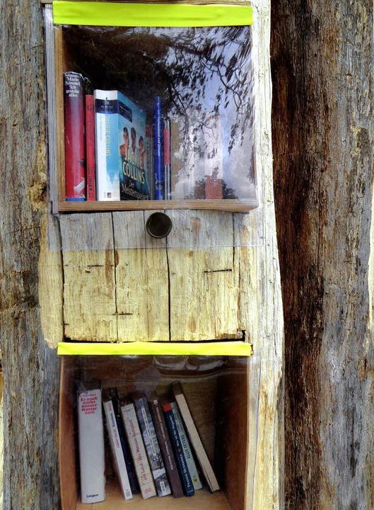 Bitte zugreifen: Die Buchkästen der Ba...heimer Park sind bereits gut gefüllt.   | Foto: paulina grimm