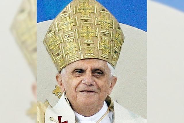 Parlamentarier planen Papst-Boykott