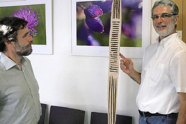Textors Holzskulpturen und Stelen, Klädtkes detailreiche Naturfotos