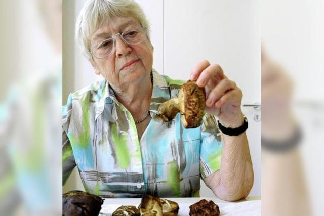So berät Pilzexpertin Roswitha Baron im Naturmuseum