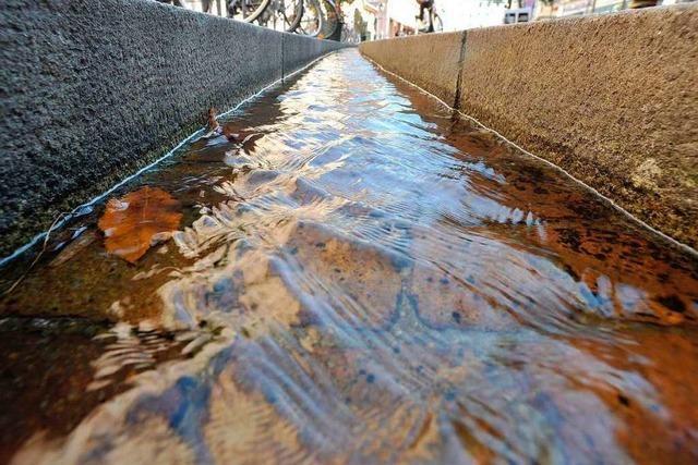 Unbekannte verstopfen ein Bächle – Wasser flutet die Sportarena
