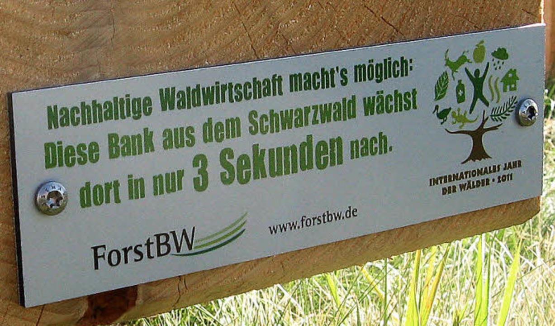 Der Wald wächst und wächst und wächst<ppp></ppp>  | Foto: Privat