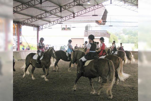 Kunstvolles auf und mit dem Pferd