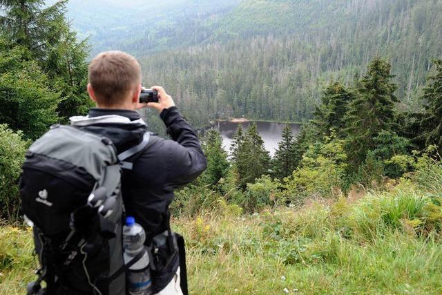 Streit im Nordschwarzwald: Nationalpark – Ja oder Nein?