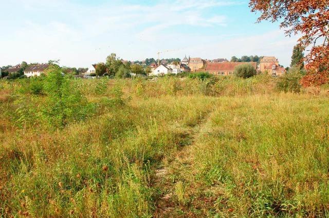 Badenova-Konzept erschließt das Baugebiet
