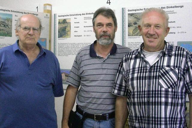 Geologie des Dinkelbergs: Museum birgt Schätze des Dinkelbergs