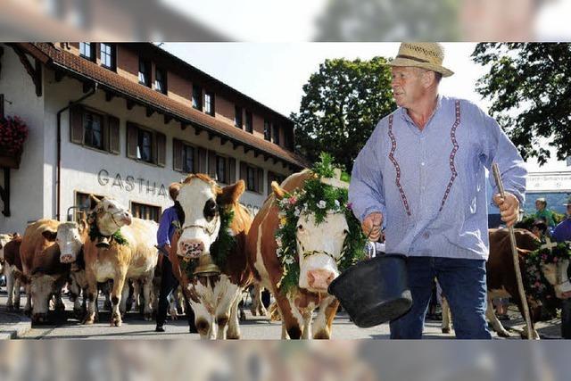 Von der Alm zur Bauernolympiade