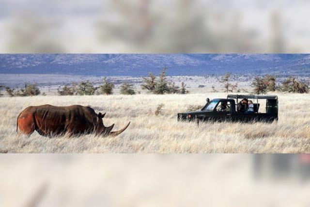 Die weißen Highlands Kenias: