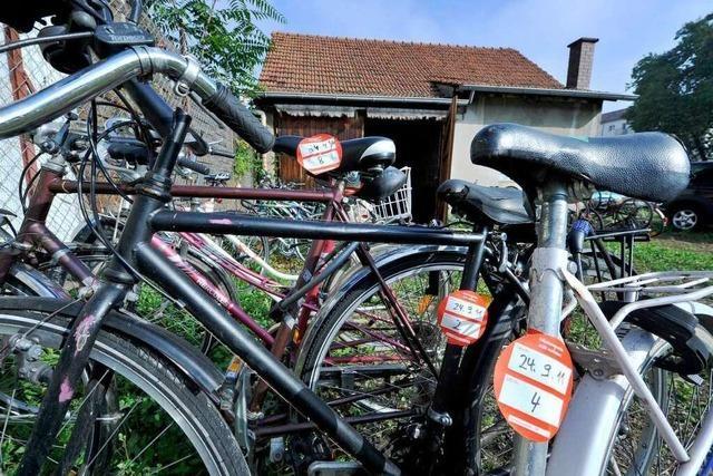 Papstbesuch: Abgeschleppte Räder warten auf Besitzer