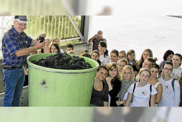 Schüler aus Oswiecim haben Spaß beim Herbsten