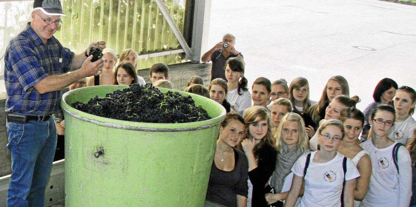 Badens Weinbaupräsident Kilian Schneid...r Oberbergener WG verarbeitet werden.   | Foto: Herbert Trogus